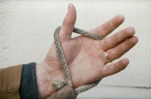 view Correct holding of horse's lead rope