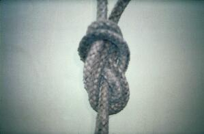 view Double lead rope with figure of eight knot