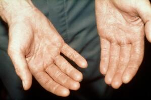 view Milking cows: a milker's hands.