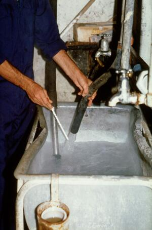 view Milking cows: testing temperature of water