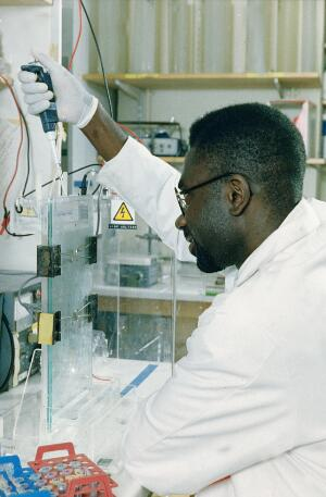 view Scientist loading gel for electrophoresis