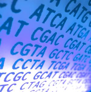 view DNA sequence
