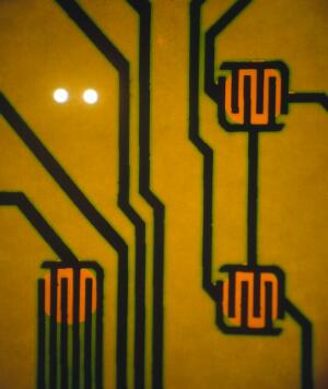 view Silicon chip