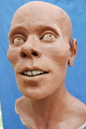 view Head sculpture