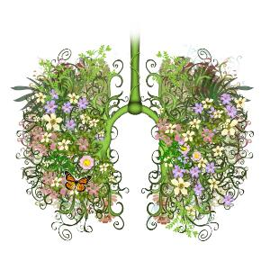 view Floral lungs