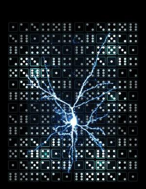 view Pyramidal neuron