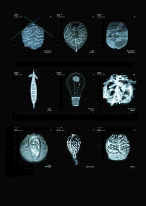 view Artworks of the Brain as b/w negative images
