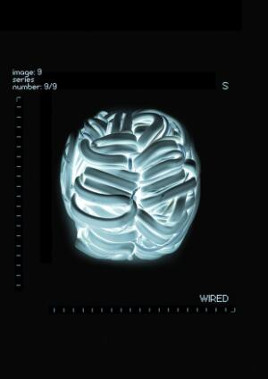 view Wired, artwork of the brain