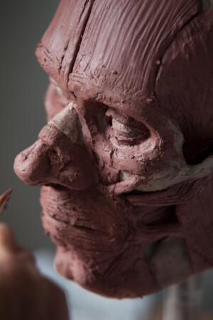 view Human head sculpted in clay, facial muscles