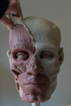 view Human head sculpted in clay, applying the skin