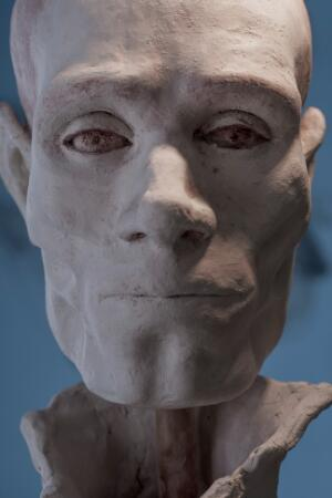 view Human head sculpted in clay, completed model