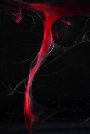"view Menstrual blood, artwork title ""Slow Dance"""