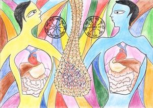 view Situs inversus, illustration