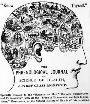 view Phrenology: Chart