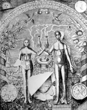 view Anatomical Fugitive Sheets: summer, c. 1620