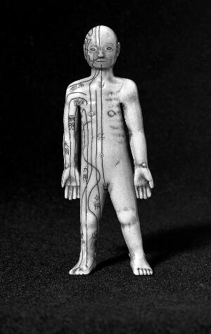 view Japanese anatomical figure, ivory.