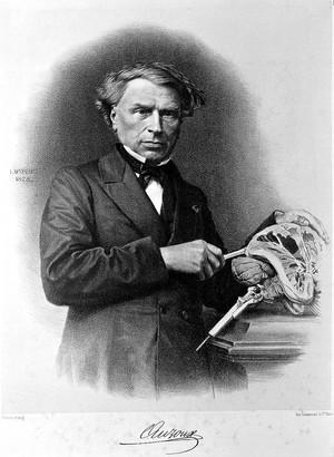 view Portrait of Thomas Louis Jerome Auzoux