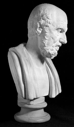 view Bust of Hippocrates