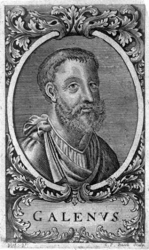 view Engraving: 'portrait' of Galen, head and