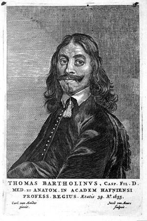 view Thomas Bartholin, portrait