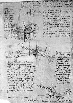 view Da Vinci: blood vessels, arteriosclerosis anatomical drawings