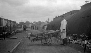 view World War One: transport of wounded.