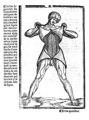 view Muscles - Berengarius 1521