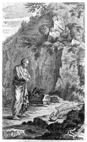 view Galen finding skeleton.