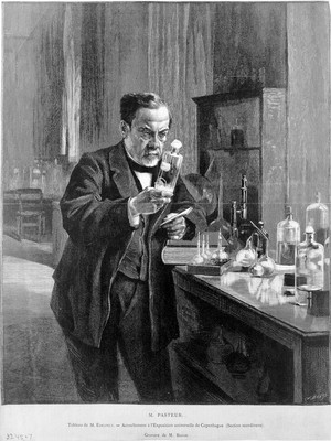 view Louis Pasteur [1822 - 1895], microbiologist and chemist