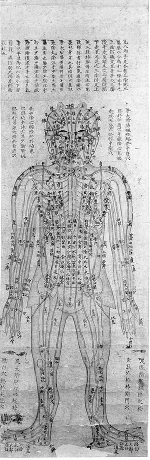 view Chinese diagram of human body showing bones