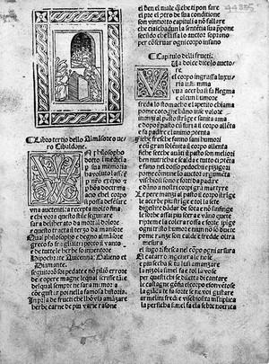 """view Rhazes, """"Libro tertio..."""", 1493: Annunciation"""