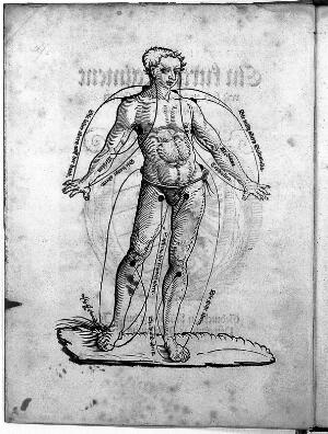 view Woodcut of blood letting figure.
