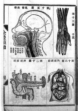 view Chinese manuscript Ch'uan-t'i hsu-chih.