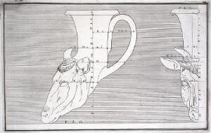 view A drinking-horn (rhyton) in the form of the head of a deer: outline drawing with measurements. Engraving, 17--.