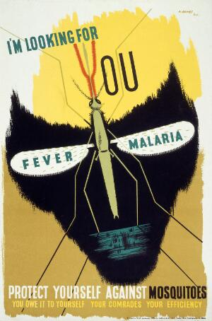 view The malaria mosquito forming the eye-sockets of a skull, representing death from malaria. Colour lithograph after A. Games, 1941.