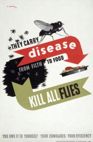 view Flies infecting food. Colour lithograph after A. Games, 1941.