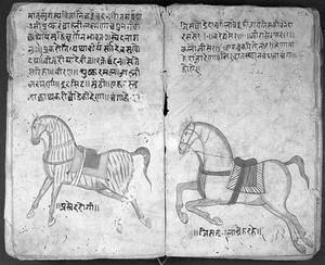 view Hindi Manuscript 191, fols. 34 verso 35 rect