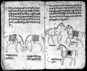 view Hindi Manuscript 191, fols 90 verso 91 recto