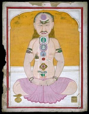 view Tantrika painting, Sanskrit MS 511