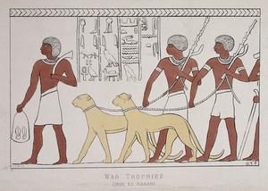 view War trophies Deir el Bahari.