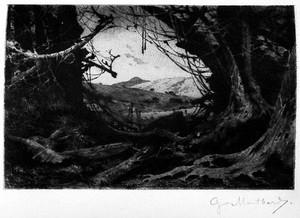 view Henry M. Stanley, In darkest Africa