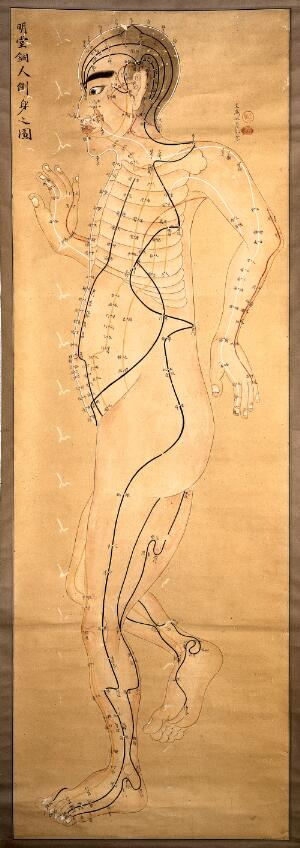 view Japanese acupuncture chart.