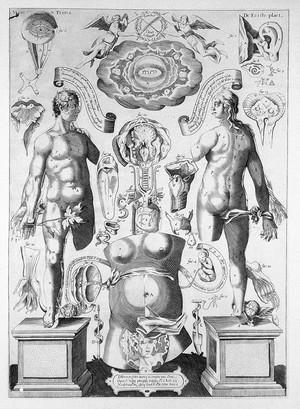 view Dissection du corps humain, Remmelin, c.1640