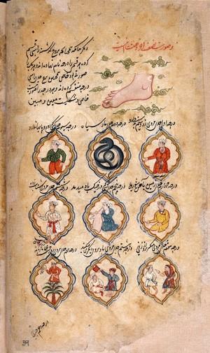 view MS Persian 373, folio 39 verso