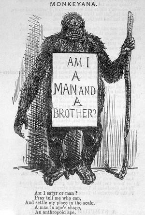 view Punch, 18 May 1861, 'Monkeyana'