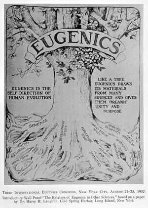 view A decade of progress in Eugenics. Scientific