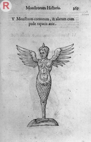 view MONSTROSITY: Winged Monster. Ulisse Aldrovandi,