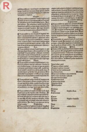 view Fasciculus medicine, 1495