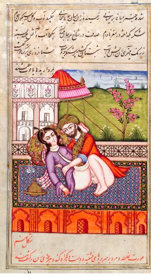 view Persian couple copulating