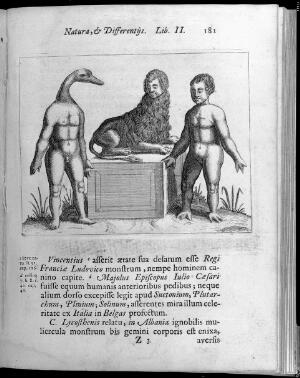 view Three figures with abnormalities, One figure has a human body with a ducks head, the second figure has a Lions body with a human head and the third has a human body with webbed feet and hands
